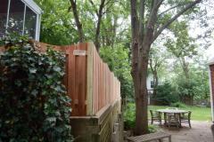 #21 Cedar Board on Board Fence on Wall