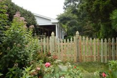 #7 Pressure Treated Pine Colonial Gothic Picket Fence