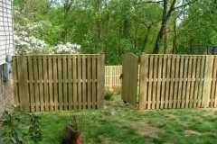 #8 Pressure Treated Pine Board on Board Fence