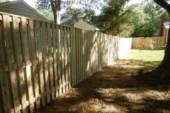#10 Pressure Treated Pine Board on Board Fence